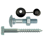 Coach screws / carriage bolt